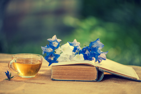 composition book: composition from old shabby book, flowers and a cup of herbal tea in the garden Stock Photo
