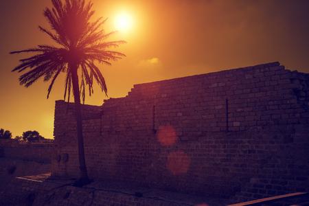 caesarea: Ruins of Caesarea fortress at sunset, Israel