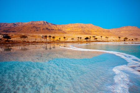 ヤシの木と背景に山と死海の海岸 写真素材