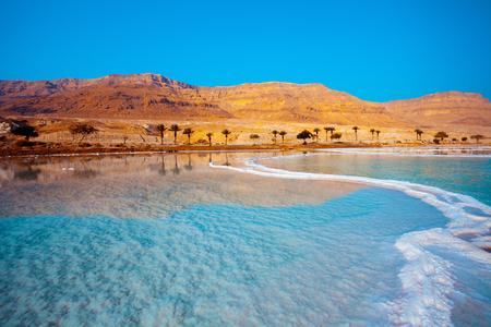 Dode Zee kust met palmbomen en bergen op de achtergrond Stockfoto