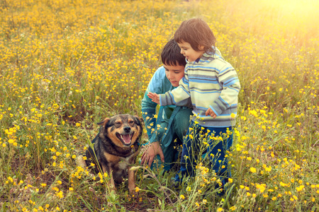 sissy: Little girl with her brother on the flower field with dog Stock Photo