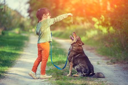 Little girl schooling dog outdoor Stock Photo