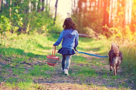 Glückliches kleines Mädchen mit einem Korb in der Hand mit einem Hund in einem Feld auf einem Feldweg zu Fuß zurück in die Kamera