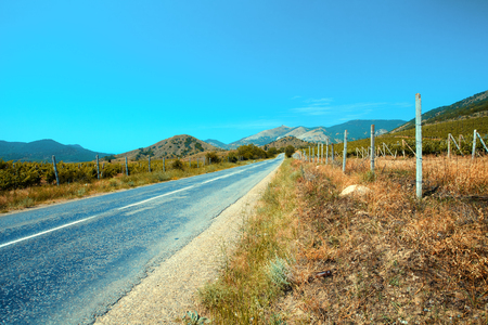 Mountain road with blue sky. Vineyards on both sides of the road Stock Photo