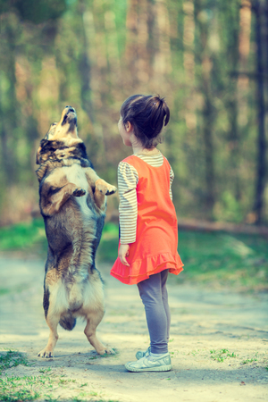 The little girl teaches the dog to perform the command. Dog stands on hind legs