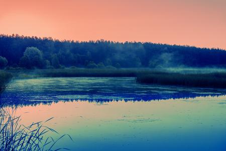 crick: Magical rose sunrise over the lake. Misty morning, rural landscape, wilderness, mystical feeling. Beautiful wild nature