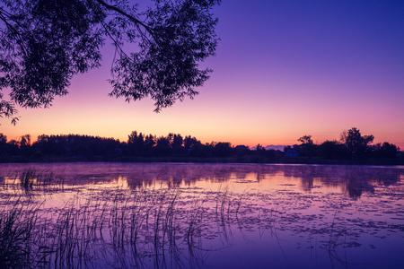 crick: Magical pink purple sunrise over the lake. Misty morning, rural landscape, wilderness, mystical feeling