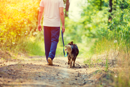 run way: Man walking with a dog on dirt road in summer