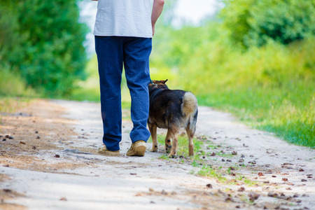 A man walking with a dog on a dirt road in summer