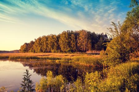 crick: Morning on the lake. Rural landscape