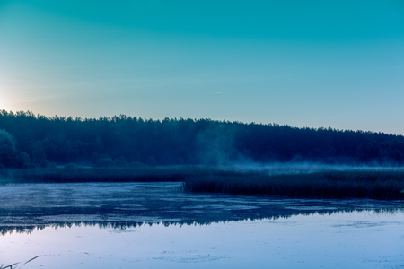crick: Foggy morning. Lake before sunrise. Rural landscape, mystical feeling