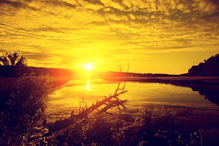 crick: Magical golden sunrise over lake. Misty morning, rural landscape, wilderness, mystical feeling Stock Photo