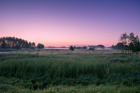 Morning in the countryside. Morning mist over the field Stock Photo
