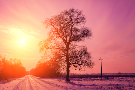 eventide: Evening in countryside, road covered with snow at sunset light Stock Photo
