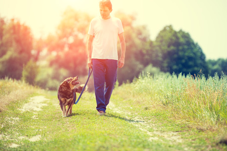 run way: The man walks with a dog on a leash on a country road by the field Stock Photo