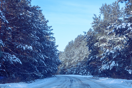Snow-covered road in the winter forest Stock Photo