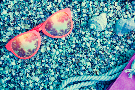 coquina: Beach scene. Big sunglasses with reflection of palm trees lying on sea coquina shells