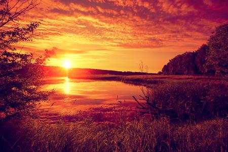 crick: Early morning, sunrise over the lake. Misty morning, rural landscape, wilderness, mystical feeling