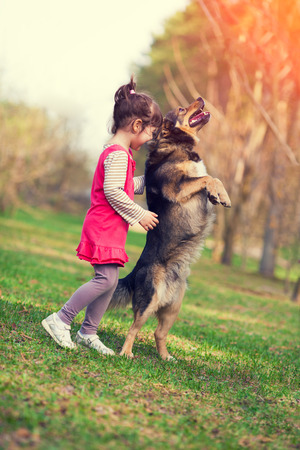 Little girl schooling dog outdoor. Begging dog and kid. Dog standing on hind legs