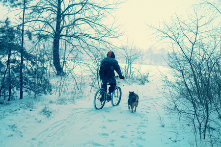 traction: Man ride bicycle in snowy winter. Dog running nearby Stock Photo