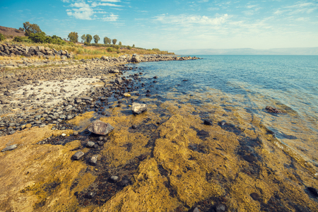 Rocky seashore. Sea of Galilee in Tabgha, Israel Imagens - 92149616