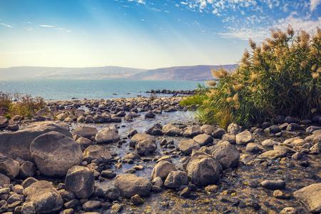 The coast of the Sea of Galilee near Ein Eyov Waterfall in Tabgha, Israel