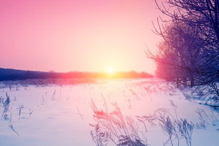 Winter snowy rural landscape at sunset Stock Photo
