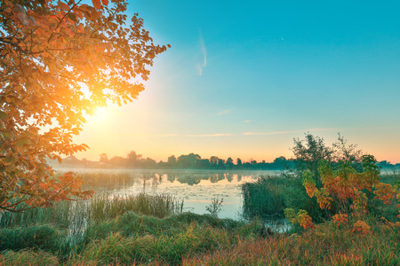 Early morning, sunrise over the lake. Rural landscape.