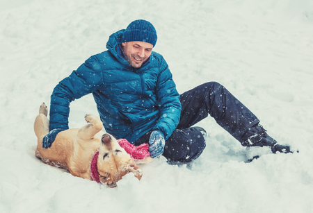 A happy man plays with labrador retriever dog on the snow in winter. The dog wearing the scarf and lying on the back Banque d'images