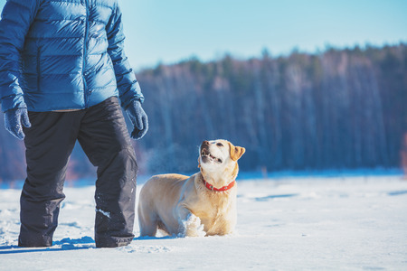 Happy man with Labrador retriever dog walks on a snowy field in winter in the deep snow