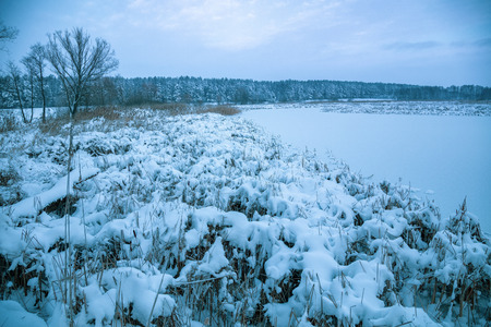 Beautiful rural winter landscape. Frozen brook  covered with snow Banque d'images