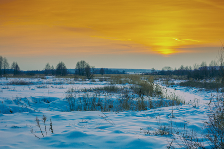 Rural winter landscape. Snowy field at sunset light Archivio Fotografico - 115527259