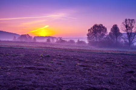 Un champ arable au petit matin dans une couleur violette tendance