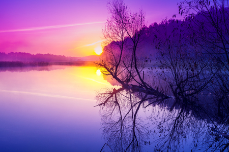 Magical purple sunrise over the lake. Misty morning. Rural landscape