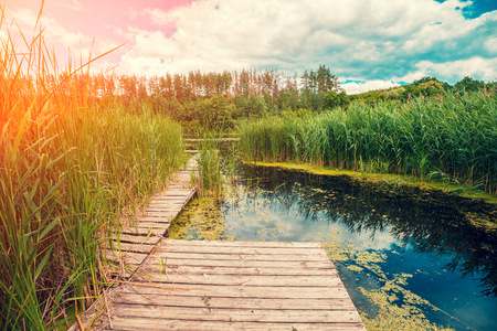 Lakeshore with wooden pier. Beautiful nature Finland