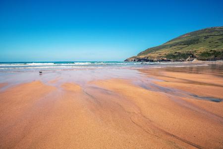 Sandy beach. Ocean on a sunny day