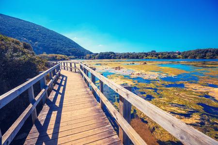 Malerische Tierwelt. Holzwanderweg im Naturschutzgebiet (Natürliche Ressourcen) Marisma de Joyel. Kantabrien, Spanien, Europa