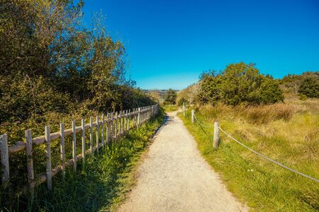 Walkway in the Natural reserve (Natural resources) Marisma de Joyel. Cantabria, Spain, Europe