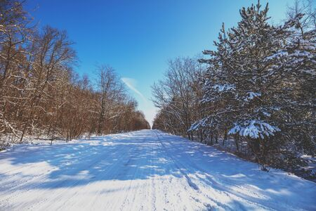 Winter country road covered with snow
