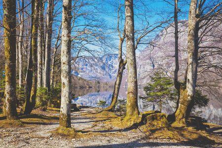 The shore of a mountain lake in early spring. Beautiful nature of Lake Bohinj, Slovenia, Europe