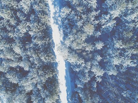 Aerial view of the road in the winter pine forest. Trees covered with snow