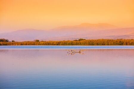 Beautiful Hula Lake against the mountains in the evening. Hula Valley in Northern Israel at sunset 免版税图像