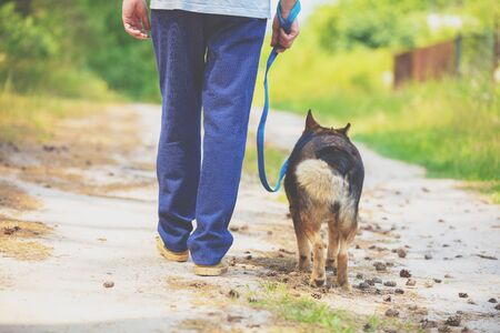 Man and dog are best friends. The man holds the dog on a leash, walks back to the camera on a dirt road in summer