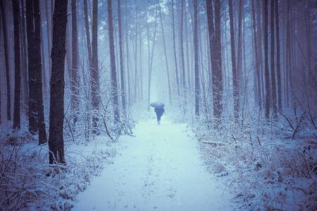 A man walks under an umbrella on a road in a winter forest in a snowstorm Reklamní fotografie