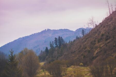 Mountains in the early misty morning. View of the mountains in early spring. Beautiful nature landscape. Carpathian mountains. Ukraine