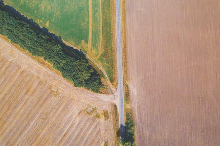 Summer rural landscape, aerial view. View of plowed and green fields, country road and row of trees