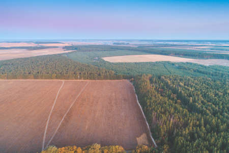 Summer rural landscape, aerial view. View of plowed field and forest in the evening