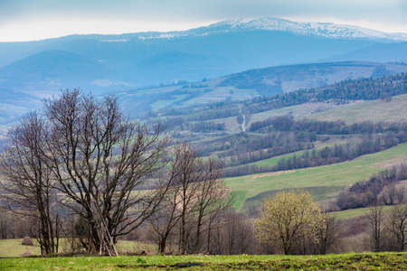View of the mountain slopes in an early spring morning. Beautiful nature landscape. Carpathian mountains. Ukraine