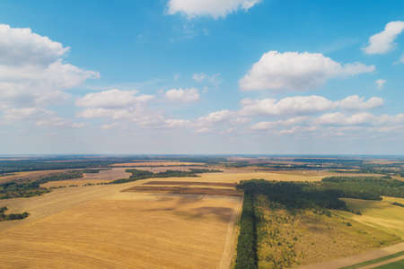 Summer rural landscape. Aerial view. View of wheat fields with beautiful sky Imagens