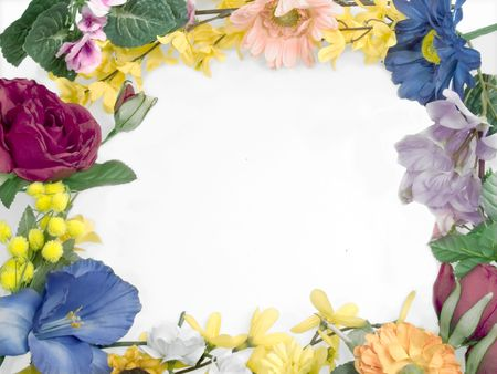 Different fowers in border frame
